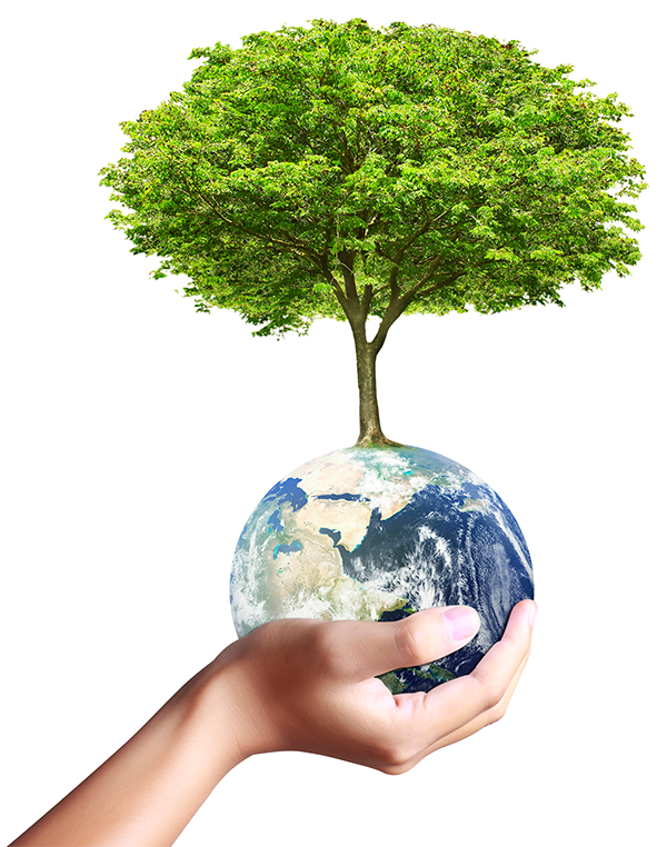 Earth globe and tree in his hand. Environmental